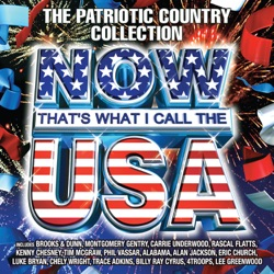 Now That's What I Call the U.S.A. (The Patriotic Country Collection) by Various Artists album reviews, download