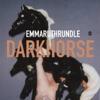 Darkhorse (Edit) - Single album lyrics, reviews, download
