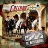 Corridos de Alto Calibre by Calibre 50 album lyrics