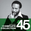 The Complete Collection by Marvin Gaye album lyrics