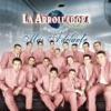 Más Adelante by La Arrolladora Banda el Limón de René Camacho album lyrics