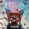 Fetish (feat. Gucci Mane) [Galantis Remix] song lyrics