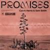 Promises - Single album lyrics, reviews, download