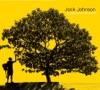 In Between Dreams (Bonus Track Version) by Jack Johnson album lyrics