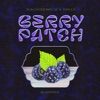 Berry Patch: Blended - EP album lyrics, reviews, download