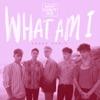 What Am I (SONDR Remix) - Single album lyrics, reviews, download