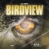 Birdview - Single album lyrics, reviews, download