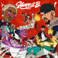 Slime & B by Chris Brown & Young Thug album overview, reviews and download