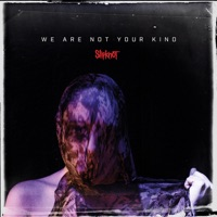 We Are Not Your Kind album listen, download