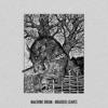 Braided Leaves - Single album lyrics, reviews, download