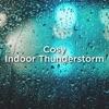 Cosy Indoor Thunderstorm album lyrics, reviews, download