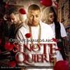 Si No Te Quiere (feat. Arcángel & Farruko) [Remix] song lyrics