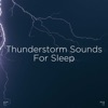 Cosy Indoor Storm song lyrics