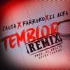 Temblor (Remix) - Single album lyrics, reviews, download