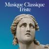 Musique classique triste album lyrics, reviews, download