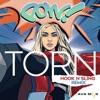Torn (Hook N Sling Remix) - Single album lyrics, reviews, download