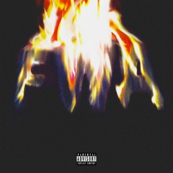 FWA by Lil Wayne album comments, play