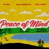 Peace of Mind (feat. Tory Lanez) - Single album lyrics, reviews, download