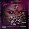 Used To Love Me (feat. Todrick Hall & Precious) - Single album lyrics, reviews, download
