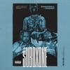 Suboxone (feat. Shakewell & DaBaby) - Single album lyrics, reviews, download