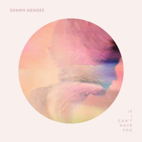 If I Can't Have You by Shawn Mendes song lyrics, reviews, ratings, credits