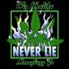 Never Lie (feat. Moneybagg Yo) - Single album lyrics, reviews, download