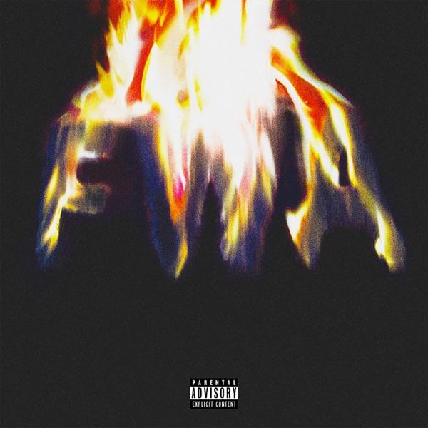 FWA by Lil Wayne album reviews, ratings, credits
