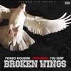 Broken Wings - Single (feat. Tsu Surf) - Single album lyrics, reviews, download