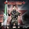 Amor En Tiempos de Guerra by Régulo Caro album lyrics