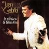 En el Palacio de Bellas Artes (En Vivo) by Juan Gabriel album lyrics