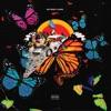 Butterfly Coupe (feat. Yung Bans, Playboi Carti) - Single album lyrics, reviews, download