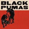 Black Pumas (Deluxe) by Black Pumas album lyrics