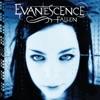 Fallen by Evanescence album lyrics