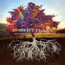 Digging Deep: Subterranea by Robert Plant album songs, reviews, credits