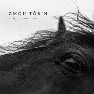 How Do You Live by Amon Tobin album reviews, ratings, credits