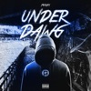 UnderDawg (feat. Lil Baby) - Single album lyrics, reviews, download
