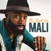 The Book of Mali by Mali Music album lyrics