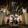 Vida Ventajosa by Los Dos Carnales song lyrics