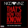 That's How You Know (feat. Kid Ink & Bebe Rexha) [HEYHEY Remixes] - Single album lyrics, reviews, download