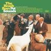 Pet Sounds by The Beach Boys album lyrics