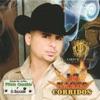 16 Narco Corridos by Larry Hernández album lyrics