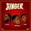 Ginger (feat. Wizkid & Burna Boy) - Single album lyrics, reviews, download