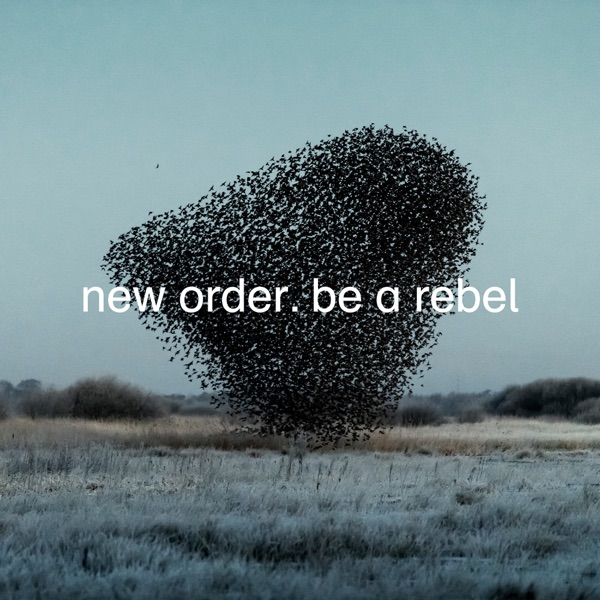Be a Rebel by New Order song lyrics, reviews, ratings, credits
