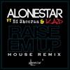 Raise Em up (House Remix) (feat. Ed Sheeran) - Single album lyrics, reviews, download