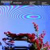 Inflorescent by Friendly Fires album lyrics