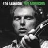 The Essential Van Morrison by Van Morrison album lyrics
