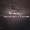 "!!"" Relaxing Thunderstorm Sounds ""!! album lyrics, reviews, download"