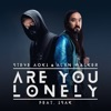Are You Lonely (feat. ISÁK) - Single album lyrics, reviews, download