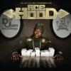 DJ Khaled Presents: Ace Hood Gutta album lyrics, reviews, download