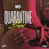Quarantine Sex - Single album lyrics, reviews, download
